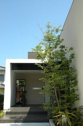 Hhouse_f_garden